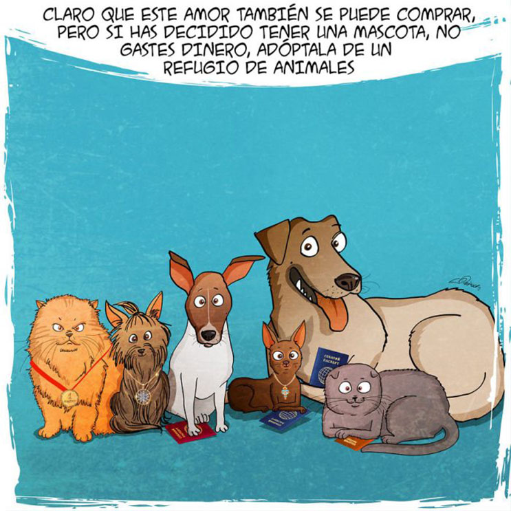 emotiva-ilustracion-nos-muestra-la-importancia-de-la-adopcion-de-animales-10