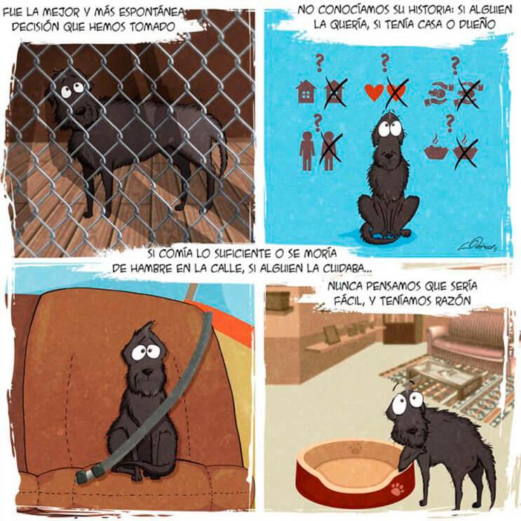 emotiva-ilustracion-nos-muestra-la-importancia-de-la-adopcion-de-animales-2