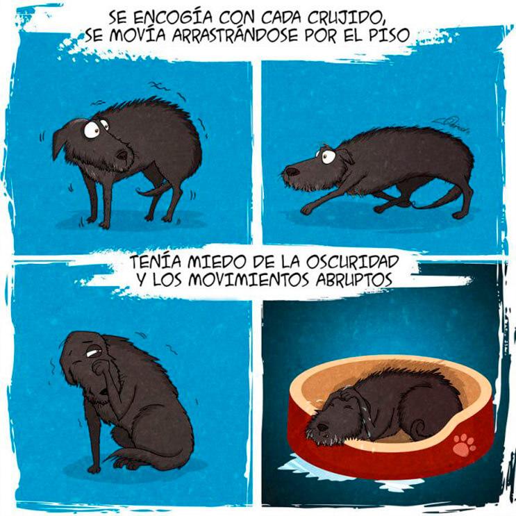 emotiva-ilustracion-nos-muestra-la-importancia-de-la-adopcion-de-animales-3