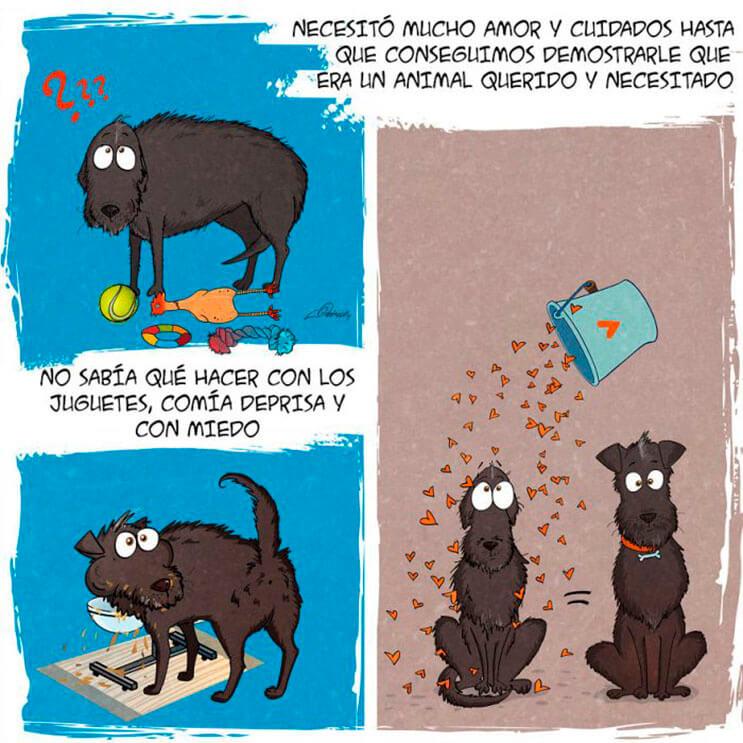 emotiva-ilustracion-nos-muestra-la-importancia-de-la-adopcion-de-animales-4