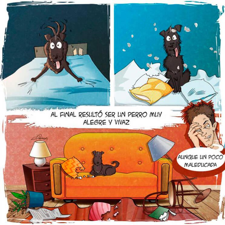 emotiva-ilustracion-nos-muestra-la-importancia-de-la-adopcion-de-animales-5