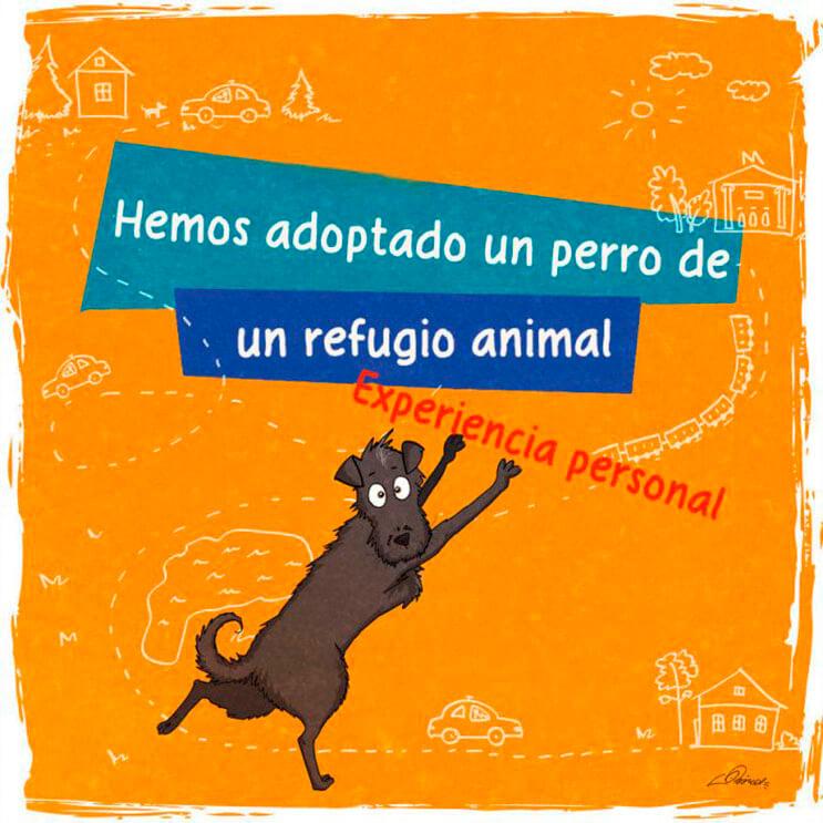 emotiva-ilustracion-nos-muestra-la-importancia-de-la-adopcion-de-animales