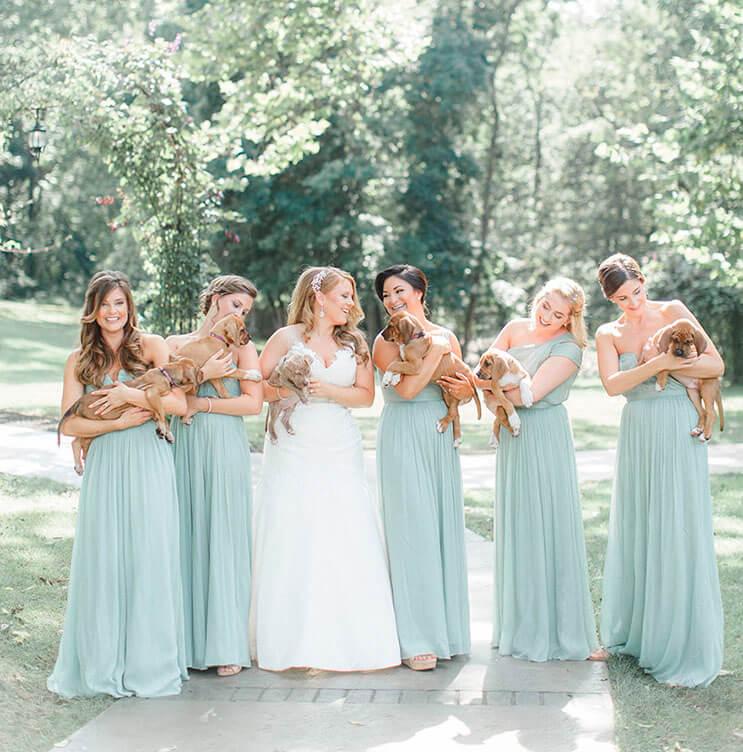 en-vez-de-ramos-de-flores-esta-novia-decidio-llevar-para-su-boda-tiernos-cachorros-rescatados-4
