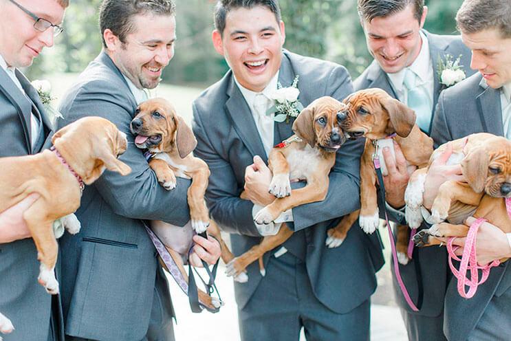 en-vez-de-ramos-de-flores-esta-novia-decidio-llevar-para-su-boda-tiernos-cachorros-rescatados-5