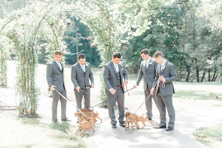 en-vez-de-ramos-de-flores-esta-novia-decidio-llevar-para-su-boda-tiernos-cachorros-rescatados-6