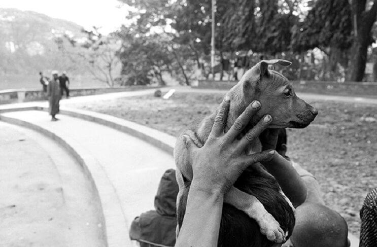estas-fotos-de-ninos-callejeros-con-sus-perros-nos-muestran-una-gran-leccion-cachorro