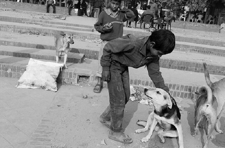 estas-fotos-de-ninos-callejeros-con-sus-perros-nos-muestran-una-gran-leccion-carino