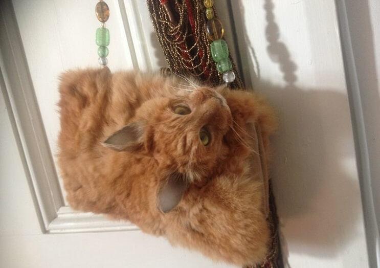 este-artista-convierte-a-un-gato-muerto-en-una-nueva-cartera-taxidermia