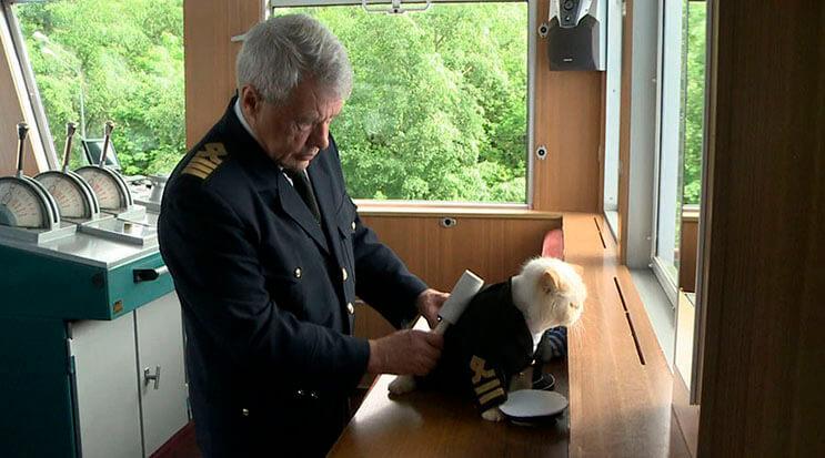 este-gato-se-convirtio-en-el-capitan-de-un-crucero-ruso-3