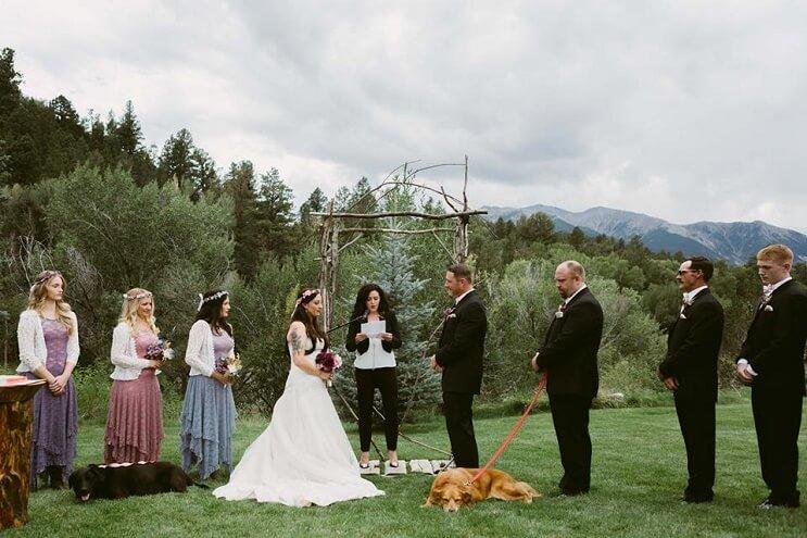este-perro-guardo-todas-sus-ultimas-energias-para-poder-estar-presente-en-la-boda-de-su-dueno-1