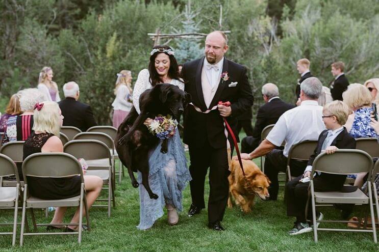 este-perro-guardo-todas-sus-ultimas-energias-para-poder-estar-presente-en-la-boda-de-su-dueno-3