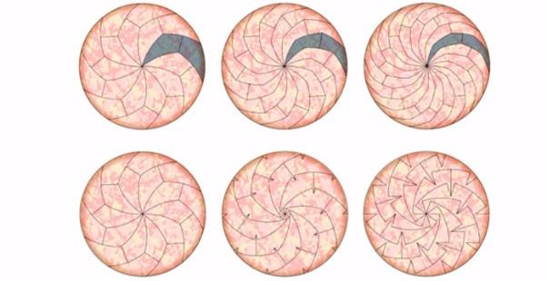 Matemáticos hallan la forma perfecta de partir una pizza 02