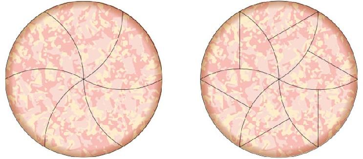 Matemáticos hallan la forma perfecta de partir una pizza 04