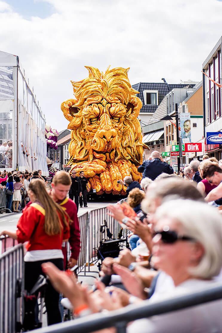 leon desfile de flores