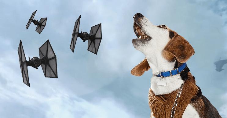 Cuando ladra, este perro suena como una nave de La Guerra de las Galaxias
