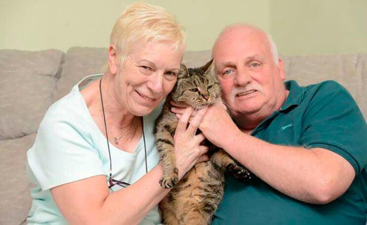 el-gato-mas-viejo-del-mundo-cumplio-31-anos-y-los-celebra-lleno-de-emocion-por-dentro-2