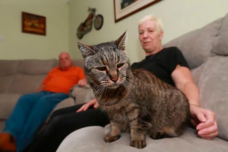 el-gato-mas-viejo-del-mundo-cumplio-31-anos-y-los-celebra-lleno-de-emocion-por-dentro-6