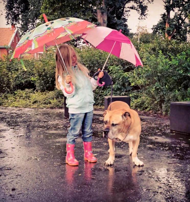 esta-nina-se-despide-de-su-mejor-amigo-perro-en-estas-emotivas-fotos-tomadas-por-su-padre-2