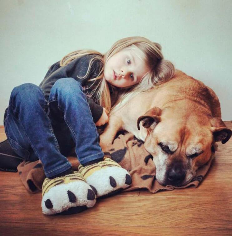 esta-nina-se-despide-de-su-mejor-amigo-perro-en-estas-emotivas-fotos-tomadas-por-su-padre-4