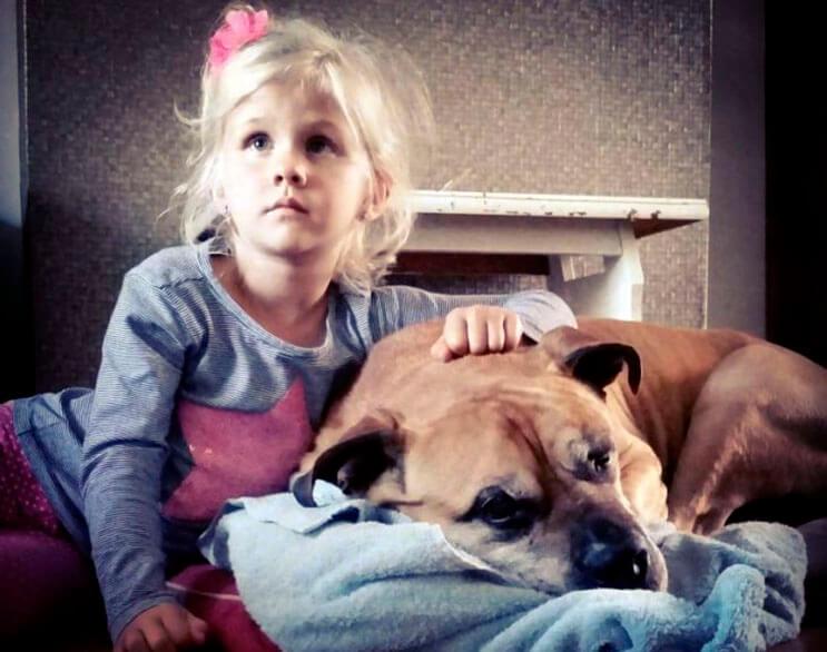 esta-nina-se-despide-de-su-mejor-amigo-perro-en-estas-emotivas-fotos-tomadas-por-su-padre-7