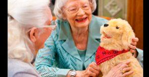 Hasbro se enfoca en la creación de perros robot para hacerles compañía a los ancianos