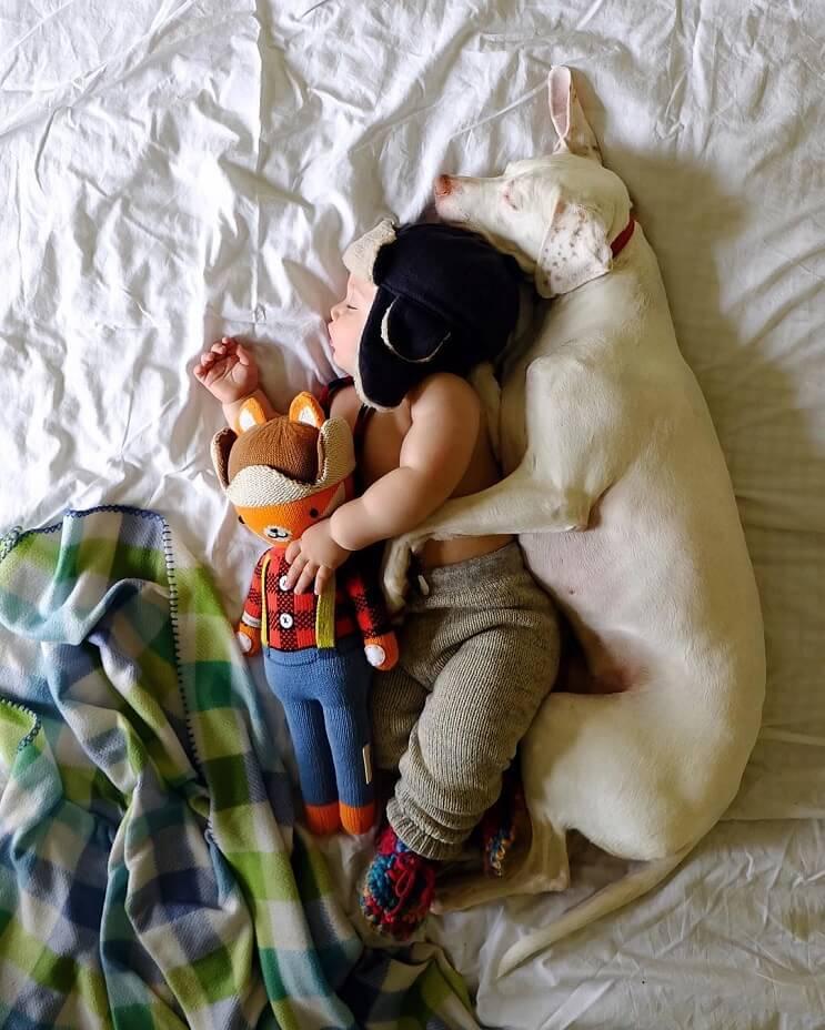 las-siestas-de-estos-dos-hermanos-encantaran-a-todos-y-daran-ganas-de-echarse-un-rato-2-1