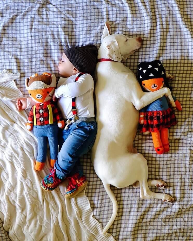 las-siestas-de-estos-dos-hermanos-encantaran-a-todos-y-daran-ganas-de-echarse-un-rato-4-1
