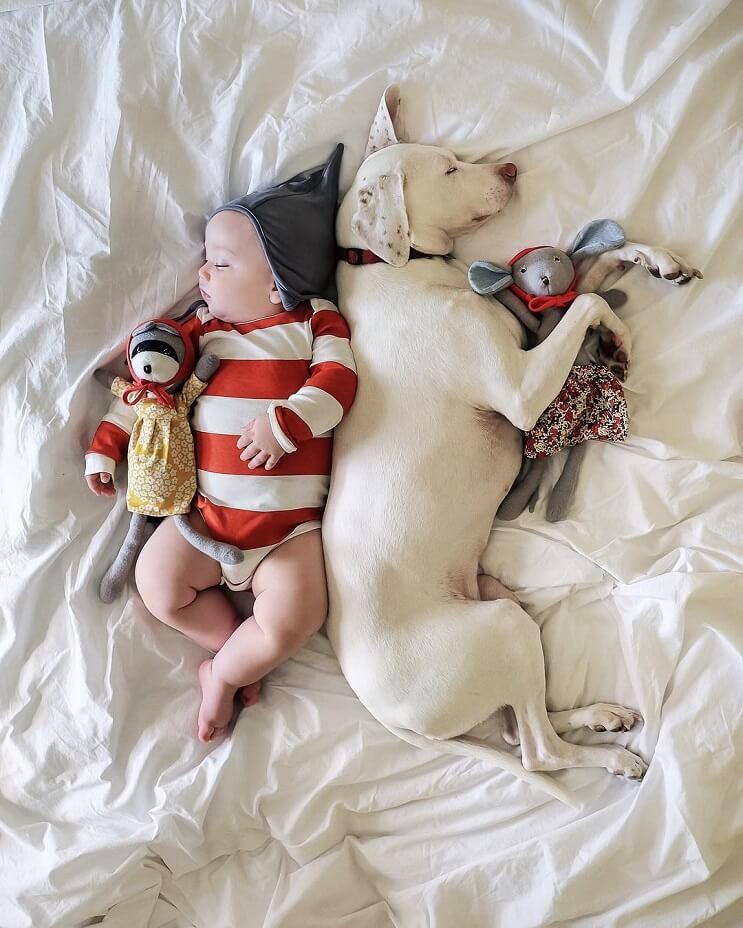 las-siestas-de-estos-dos-hermanos-encantaran-a-todos-y-daran-ganas-de-echarse-un-rato-5-1