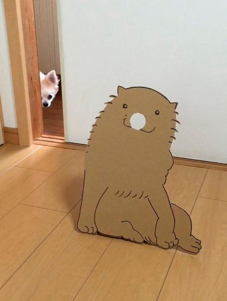 si-no-quieres-gastar-una-fortuna-en-el-disfraz-de-tu-perro-haz-lo-que-esta-artista-hizo-con-carton-1