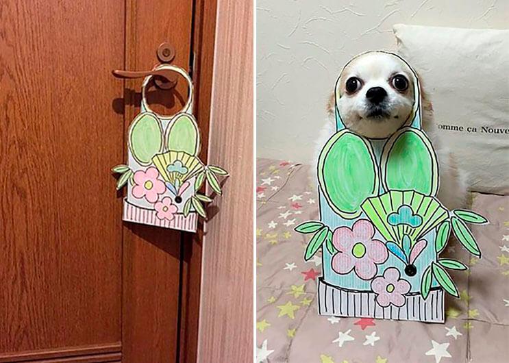 si-no-quieres-gastar-una-fortuna-en-el-disfraz-de-tu-perro-haz-lo-que-esta-artista-hizo-con-carton-11