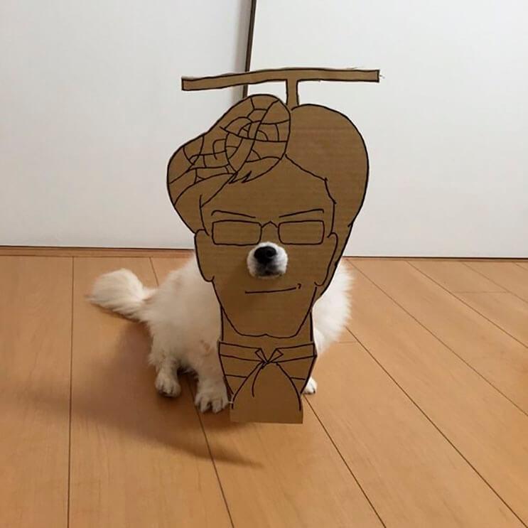 si-no-quieres-gastar-una-fortuna-en-el-disfraz-de-tu-perro-haz-lo-que-esta-artista-hizo-con-carton-15