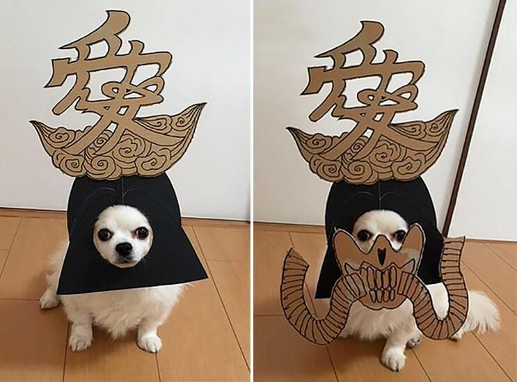 si-no-quieres-gastar-una-fortuna-en-el-disfraz-de-tu-perro-haz-lo-que-esta-artista-hizo-con-carton-23