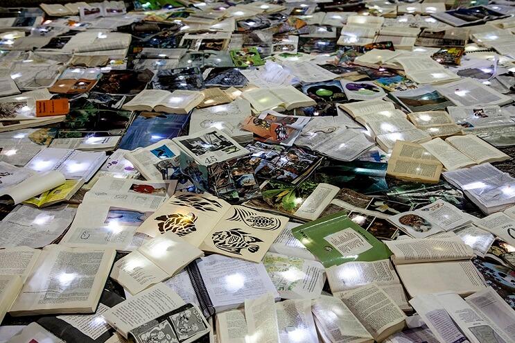 una-calle-en-canada-cubierta-con-10000-libros-para-los-amantes-de-la-lectura-05