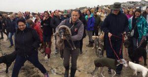 Cientos de personas acompañaron a este perro enfermo en su última caminata