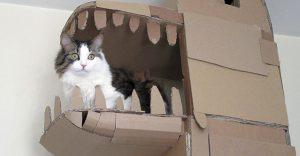 La casa de cartón de este gato es puro diseño y originalidad