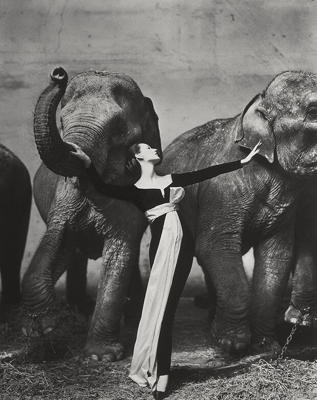 las-fotografias-que-han-generado-mas-influencia-en-el-mundo-1955