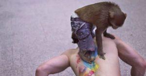 Un sujeto dejó que un mono le haga un tatuaje en la espalda. El resultado los sorprenderá