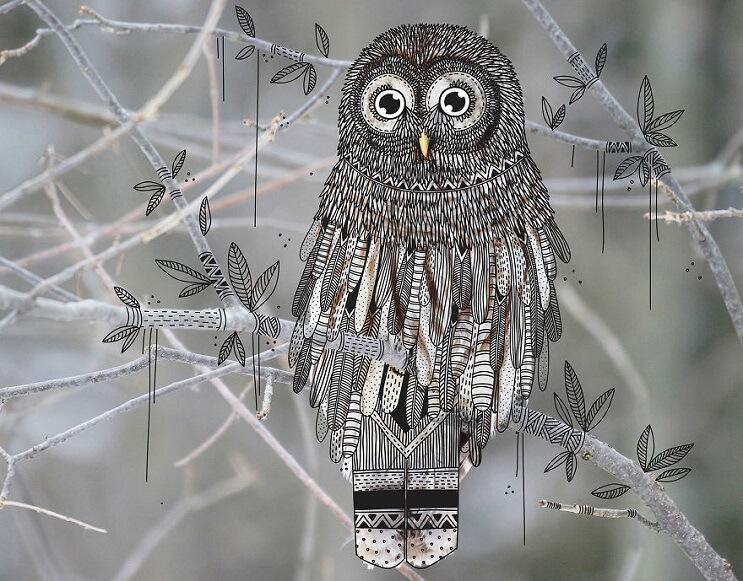 maravillosos-animales-convertidos-en-divertidos-doodles-buho