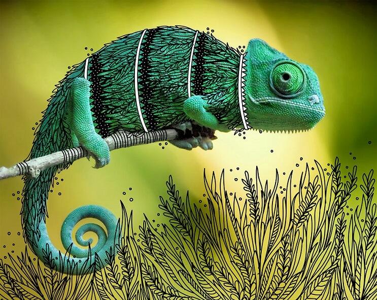 maravillosos-animales-convertidos-en-divertidos-doodles-camaleon