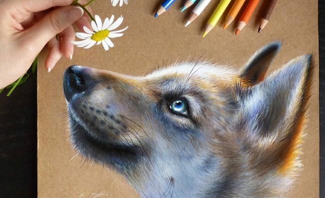 Ilustraciones hiperrealistas de animales hechas por Kate Mur