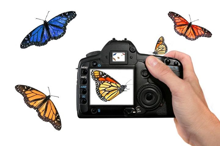 Engranaje de la cámara