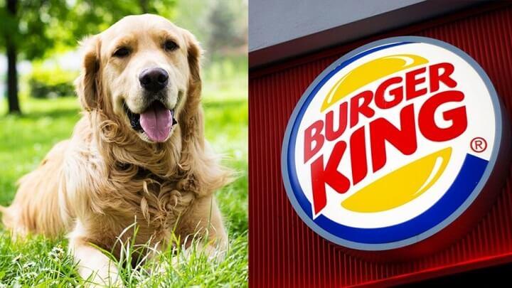 campaña Burger King perro guía
