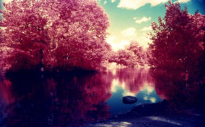 foto infrarroja de paisaje
