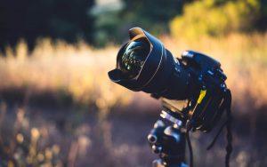 Consejos-para-tomar-buenas-fotografías-de-fauna-salvaje-.png
