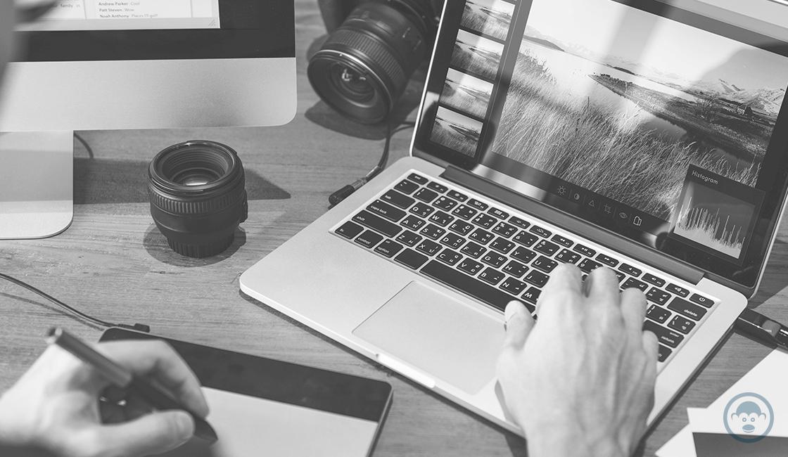 informate-sobre-los-requisitos-que-piden-en-un-trabajo-para-fotografos.png
