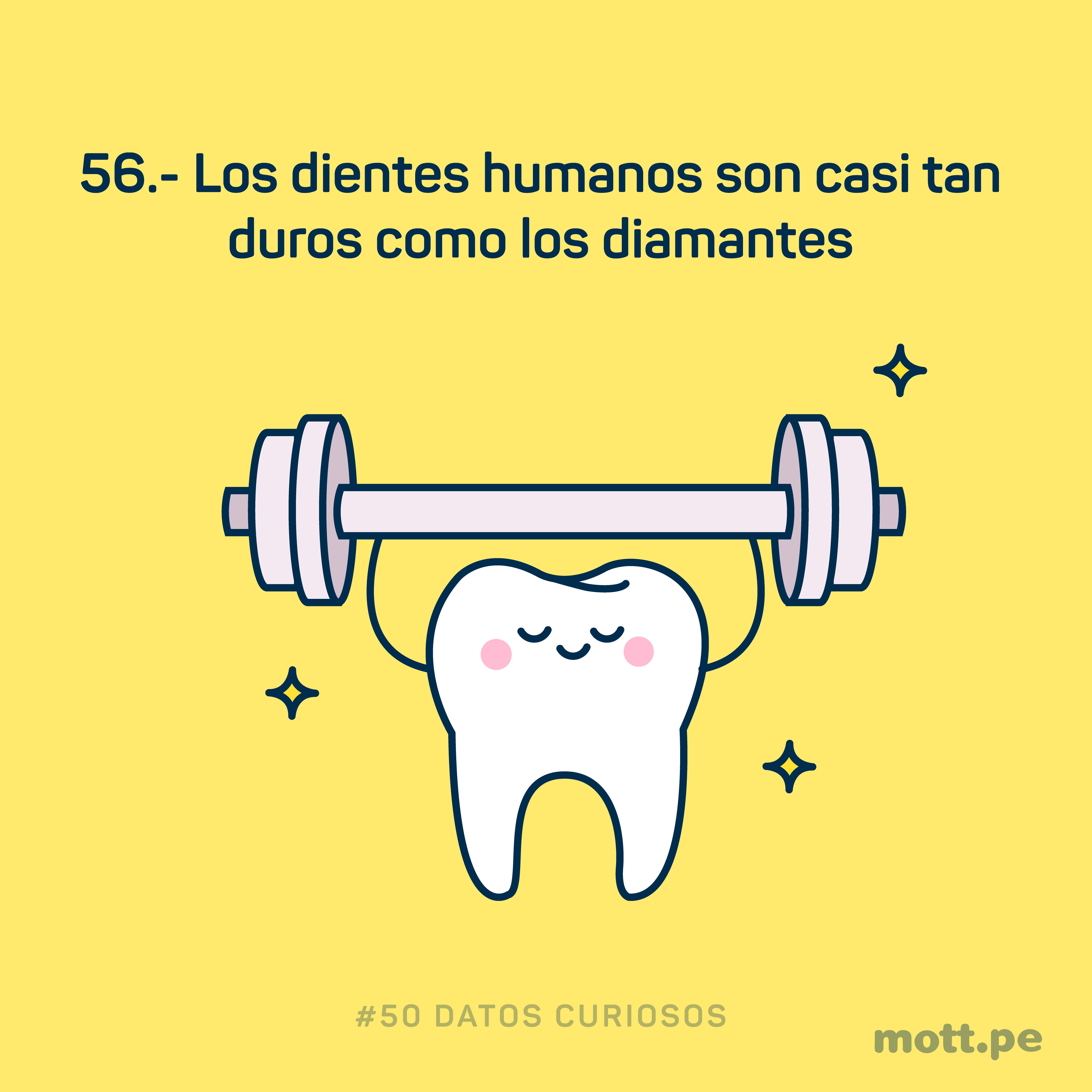 los dientes pueden ser duros como diamantes