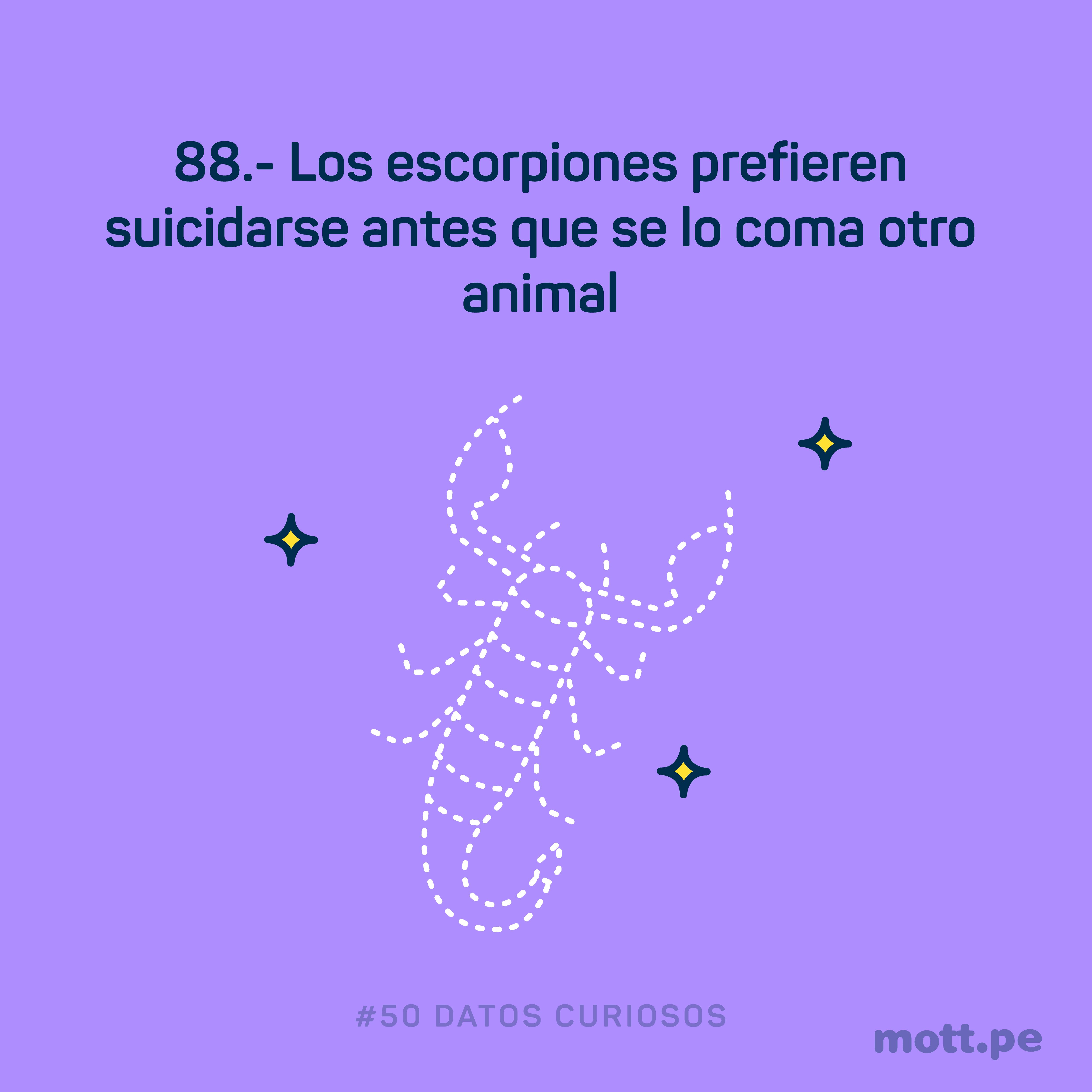 los escorpiones se suicidan