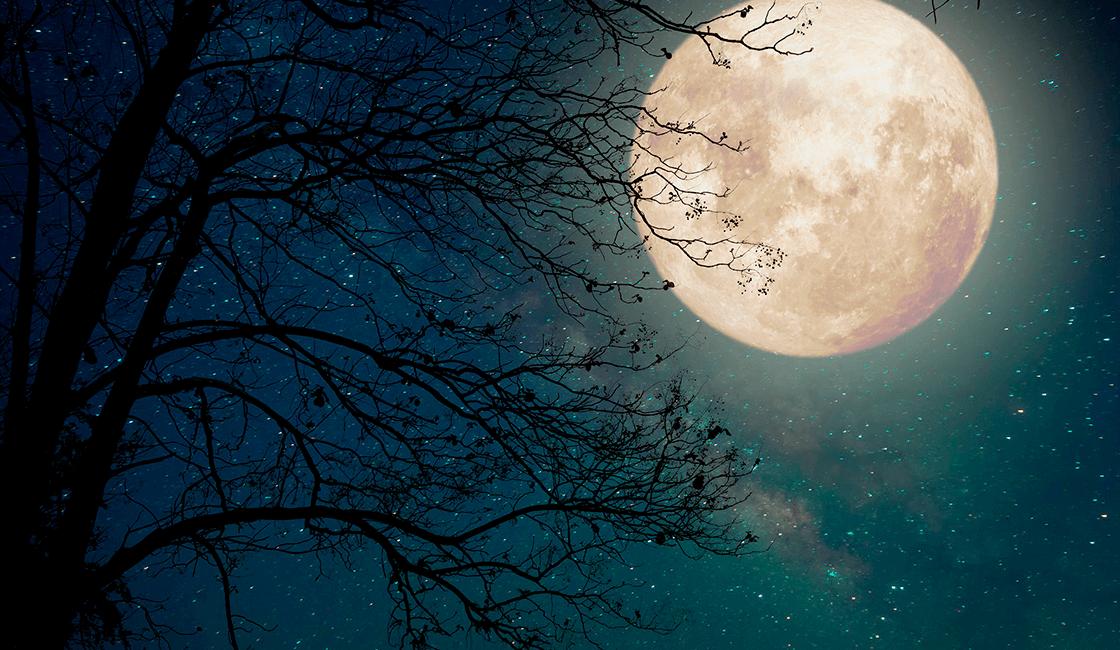 Cómo-tomar-fotografía-nocturna-de-la-Vía-Láctea-con-luna-llena