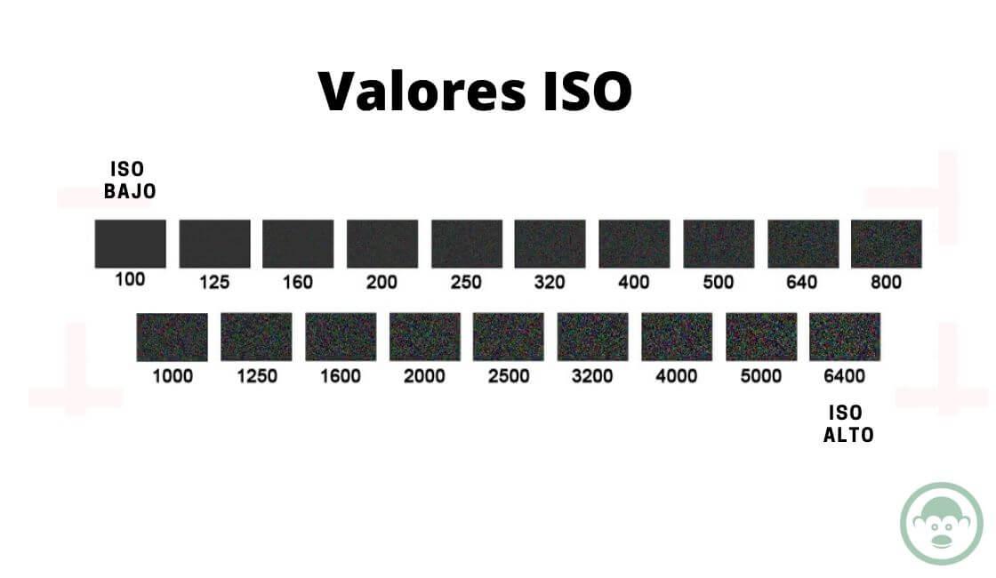 VALORES ISO