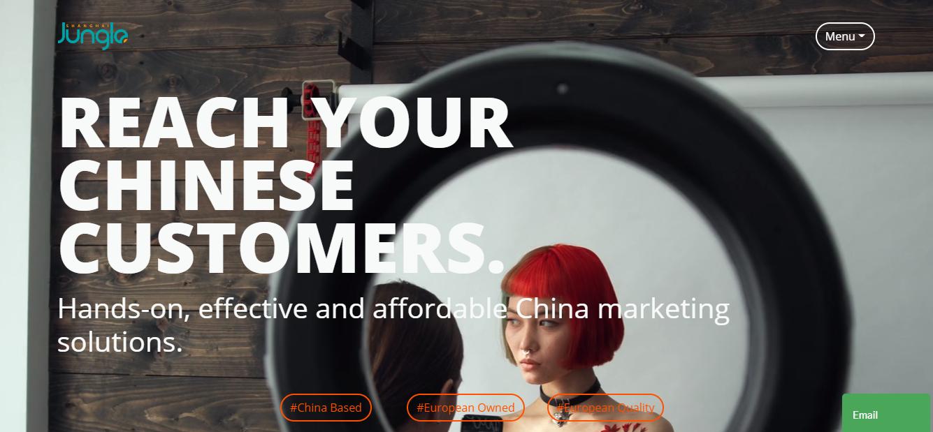jungle agencias de marketing digital